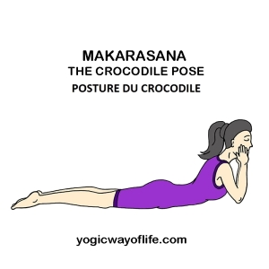 Makarasana - la posture du crocodile - the crocodile pose