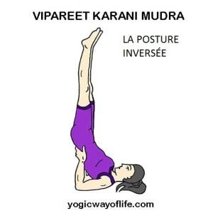 Vipareet Karani Mudra - La posture inversée