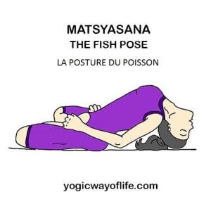 Matsyasana - la posture du poisson pour RENFORCER le système IMMUNITAIRE