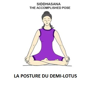 siddhasana la posture du demi-lotus