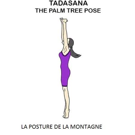tadasana la posture de l'arbre ou la posture du palmier ou la posture de la montagne the palm tree pose