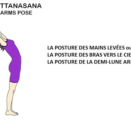 Hasta Uttanasana - la posture des mains levées - the raised arms pose