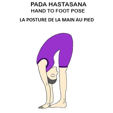 Padahastasana - la posture de la main au pied - the hand to foot pose